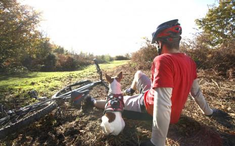 hund-cyklist