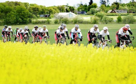 2016-05-14 Halmstad Hallandsloppet på cykel. Banan slingrar sig över böljande rapsfält i den Halländska naturen. Foto:Björn olsson