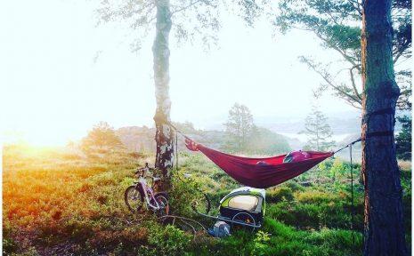 Naturbild med cyklar och hängmatta.